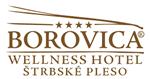 borovica logo