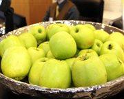 jablká - hpl h
