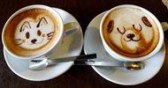 káva latte art pxb