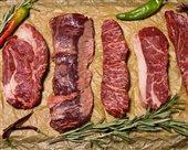 mäso sur pxb ann 1992